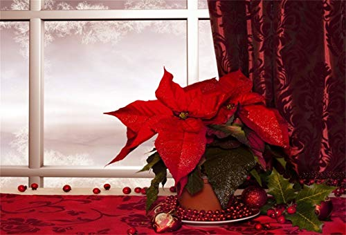 CSFOTO 8x6ft Background Christmas Flower on White Window Photography Backdrop Poinsettia Snowflake Winter Luxury Curtain Merry Christmas Year Celebration Photo Studio Props Vinyl Wallpaper for $<!--$25.20-->