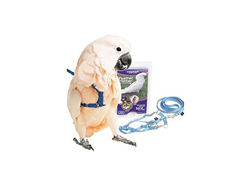 Premier Feather Tether Bird Harness and Leash