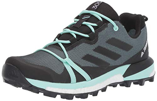 adidas outdoor Women's Terrex Skychaser LT GTX Athletic Shoe, ASH Grey/Black/Clear Mint, 8 M US