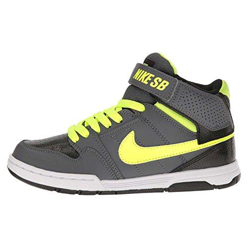 Nike Zoom Slip Stefan Janoski Sur Gris Fonc