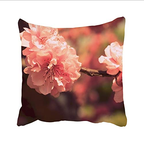 Ranhkdn Plum Blossoms Wallpaper The Office Pillow Cushions Cover Throw Pillow Cover for Sofa Bedroom
