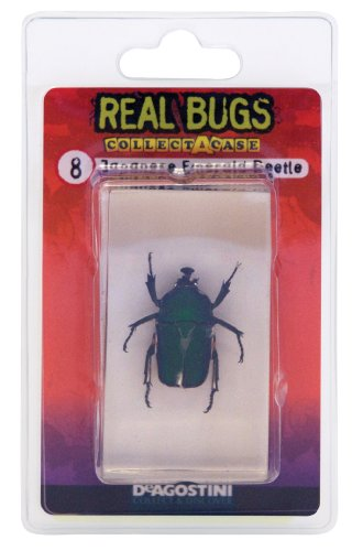 deagostini-real-bugs-japanese-emerald-beetle-bug