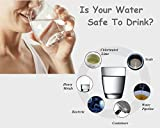 ChemCare Drinking Water Test Kit 10 in 1, Well and