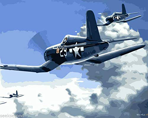 FidgetFidget Paint by Number Air Combat F4U Corsair Salute to The Jolly Rogers DZ7258