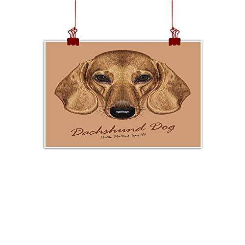 Jouiysce Modern Picture Dachshund Dog Animal Cute face. Vector Cute Dachshund Puppy Head Portrait. 36