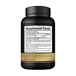 NUTRAFX BCAA FX Branched Chain Amino Acid 2:1:1 Ratio Muscle Building Recovery Capsules (450-Capsules)