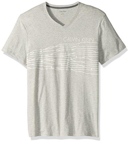 Calvin Klein Men's Short Sleeve V-Neck Graphic T-Shirts, Vapor Heather, Large
