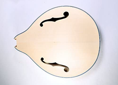 Diy Mandolin Build Your Own Mandolin Kit Amazoncouk Musical
