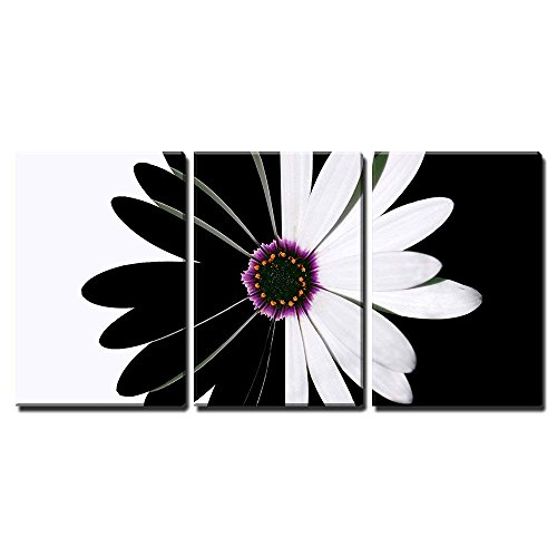 """wall26 - 3 Piece Canvas Wall Art - Flower Black and White - Modern Home Art Stretched and Framed Ready to Hang - 24""""x36""""x3 Panels"""