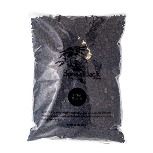 Bonsai Jack - Black 1/4 inch Horticultural Lava Rock Soil Additive for Cacti, Succulents, Plants - No Dyes or Chemicals - 100% Pure Volcanic Rock (2 Quarts, Top Dressing)