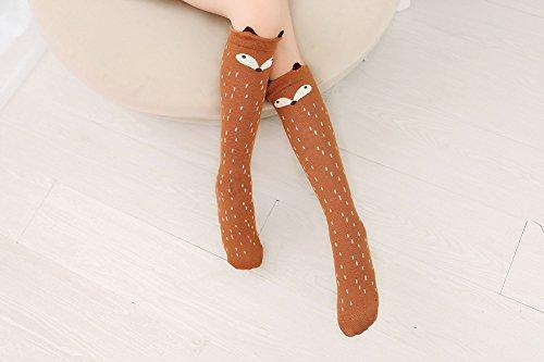 Buy fox socks girls