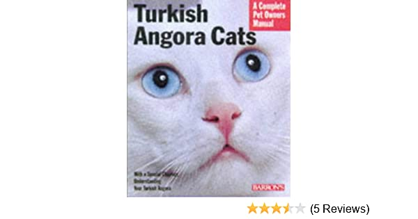 Turkish Angora Cats Everything About Purchase Care Nutrition