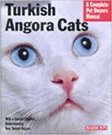 Turkish Angora Cats: Everything About Purchase, Care ...