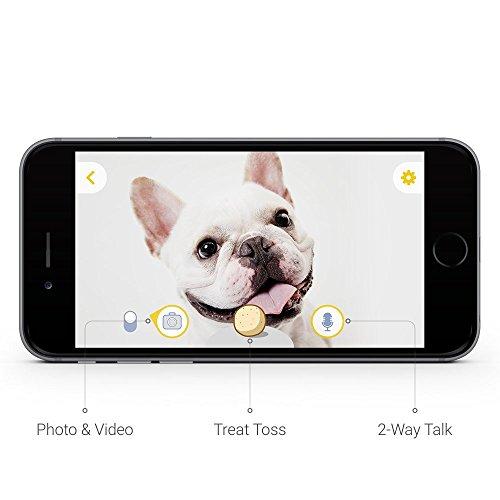 Furbo Dog Camera: Treat Tossing, HD