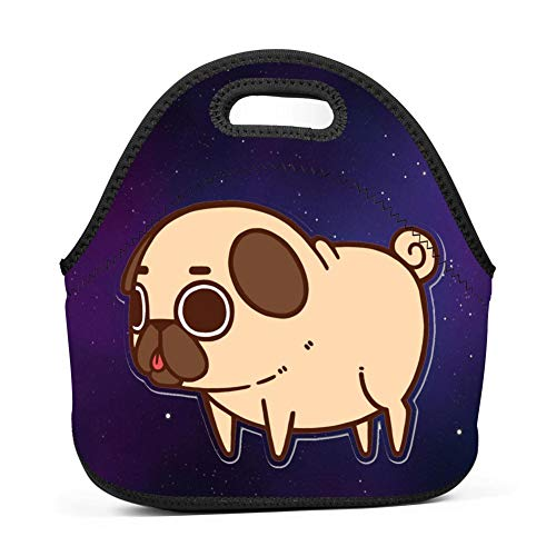 Fat Pug Dog Lunch Bag Insulated Bento Tote Bag Lunch Box with Zipper for Children -