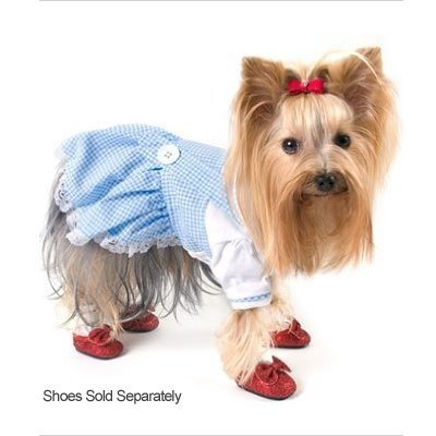 Dorot (Dog Dorothy Costumes)