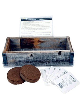 Reclaimed Barnwood Planter Box Mini Herb Garden Kit - Grow Cooking Herbs from Seed: Basil, Dill, Thyme, Parsley, Oregano, Cilantro