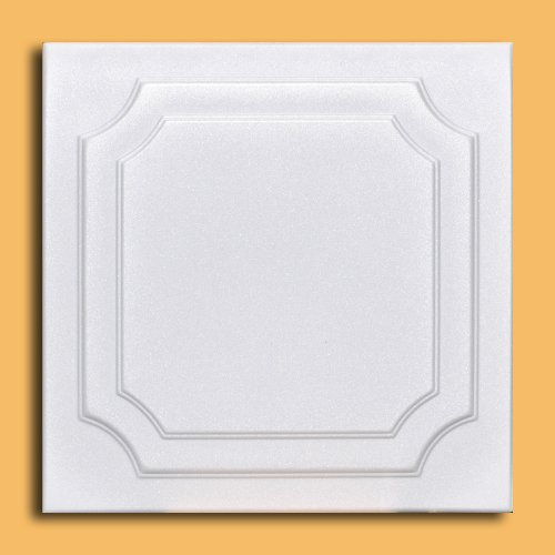 white-styrofoam-ceiling-tile-yalta-package-of-8-tiles-other-sellers-call-this-the-virginian-and-r08