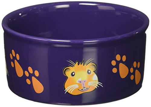 Kaytee Paw-Print PetWare Bowl, Guinea Pig, Assorted Colors (Print Tips)