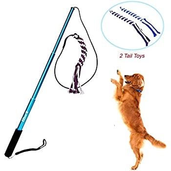 Wellbro Interactive Dog Extendable Teaser Wand with 2 Rope Chew Tail Toy, Small, Blue