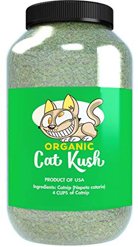 Cat Kush Organic Catnip, Safe Premium Blend Perfect for Cats, Instilled with Maximized Potency Your Kitty is Sure to Go Crazy for (4 Cups)
