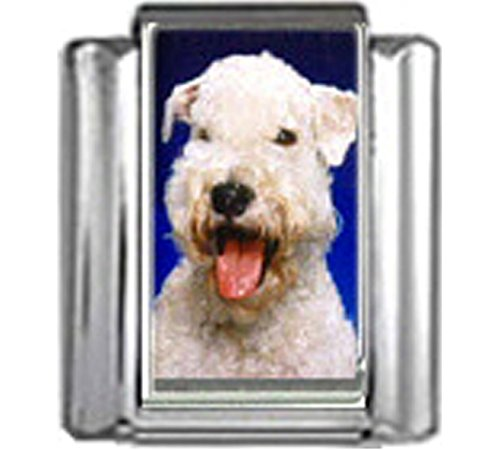 Stylysh Charms Wheaten Terrier Dog Photo Italian 9mm Link DG399