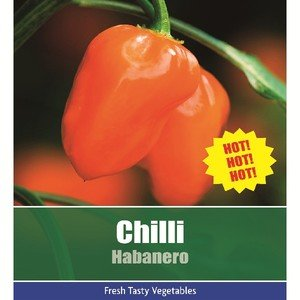 De Ree Chilli Habanero Pepper Vegetable / Fruit Plant 8 Seeds Hot Hot! Hot!!
