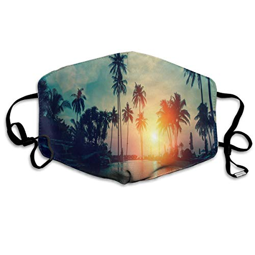 Anti Dust Mask Sunset Palm Trees Tropical Beach Face Mask Winter Healthy Warm For Unisex Halloween]()
