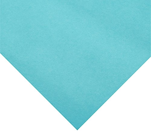 Rainbow Duo-Finish Kraft Paper Roll, 40 lbs, 48 Inches x 200 Feet, Aqua - Kraft Paper Colored