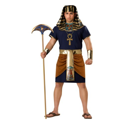 InCharacter Costumes Men's Egyptian Pharaoh Costume, Gold/Blue,