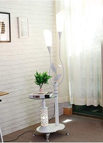 FJFLDD フロアランプリビングルームのコーヒーテーブルランプシンプルでモダンなベッドルームスタディクリエイティブ垂直のテーブルランプランプ L8D1D6