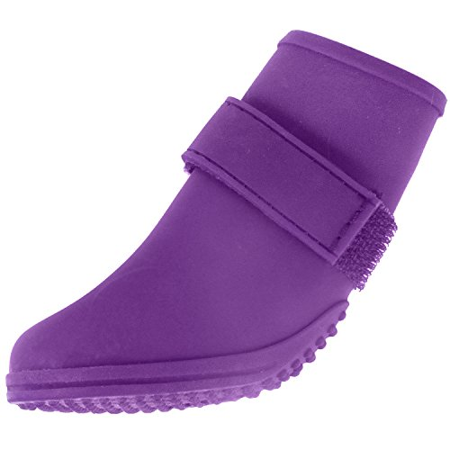 American Kennel Club Jelly Wellies Preimum Rain or Shine Waterproof Dog Boot with Extra Firm Gripping Soles- Medium, Purple by American Kennel Club