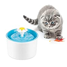 Pawfly Flower Pet Fountain 56 Oz BPA Free Water Dispenser Drinking Bowl for Cats Bird bath and Small Dogs, Blue