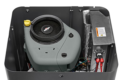 Briggs & Stratton 40445 8000-watt Home Standby Generator System with 50-Amp Automatic Transfer Switch