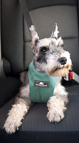 Sleepypod ClickIt Sport Crash-Tested Car Safety Dog Harness (Medium, Robin Egg Blue)