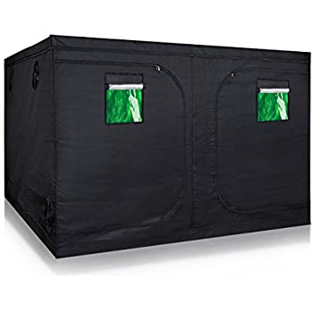 TopoLite 120 x120 x80  Indoor Grow Tent Hydroponic Growing Dark Room Green Box  sc 1 st  Amazon.com & Amazon.com : TopoLite 120