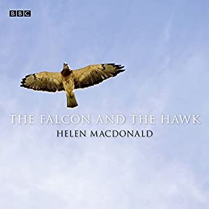 The Falcon and the Hawk Radio/TV Program