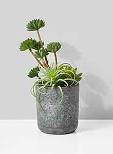 Serene espacios de vida Artificial mixtos suculentas en gris de cemento redondo Pot, ideal para Bar, escritorio, contador, Hotel Lobby