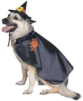 Idée cadeau de noel pour chien