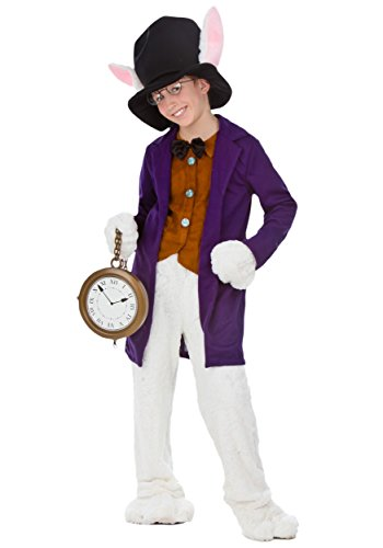 Rabbit Costumes Alice In Wonderland (Big Boys' White Rabbit Costume X-Small)