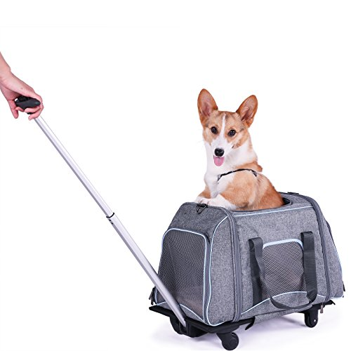 Cheap Petsfit Not Airline Approved Pet Rolling Carrier with Removeable Wheels for Pets up to 22 Pounds, 23″ Lx13 Wx14 H