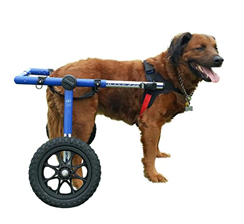 Dog Wheelchair - For Large Dogs 70-180 lbs - Veterinarian Approved - Wheelchair for Back Legs - By Walkin' Wheels