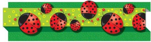 Carson Dellosa Ladybugs Borders (108040)