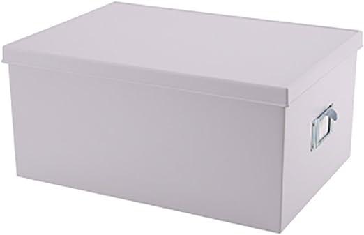 Qiansejiyichuwuhe Caja de Almacenamiento Caja de Almacenamiento de Escritorio Caja de Almacenamiento de Documentos Simple Oficina de plástico con Caja de Almacenamiento de Archivos de Tapa: Amazon.es: Hogar
