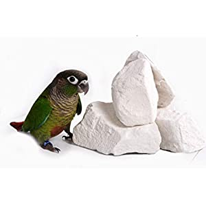 Natural Mineral Block for Birds(250 gm)