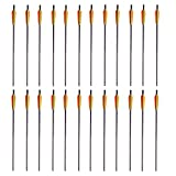 6305778 SA Sports 20'' Carbon Bolts 24-Pack (#577): Savings Pack for Big Game Hunting or Target Shooting