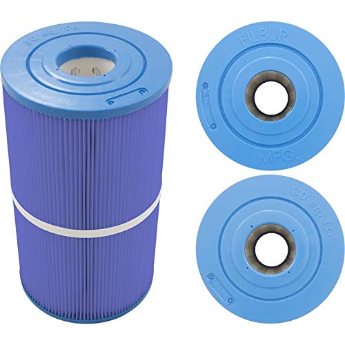 (Filbur FC-3915M Antimicrobial Replacement Filter Cartridge for Watkins 30/Hot Spring Microban Pool and Spa)