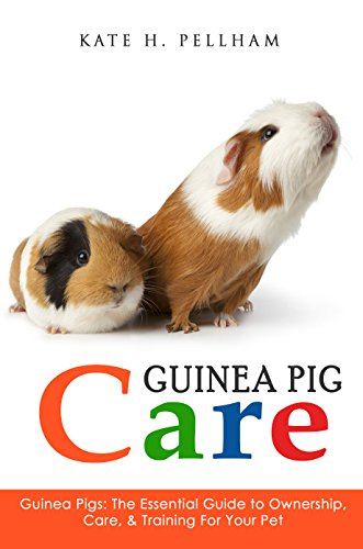 Guinea Pig Litters - Guinea Pigs: The Essential Guide To Ownership, Care, & Training For Your Pet (Guinea Pig Care)