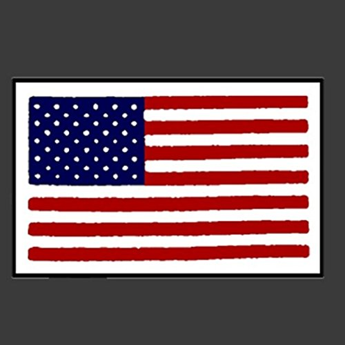 Hot Leathers PIC AMERICAN FLAG SMALL, Premium Quality - 3