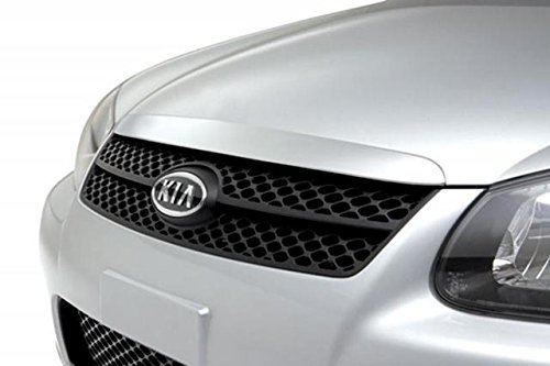 Genuine Kia P8380-2F001 Radiator Grille Kit